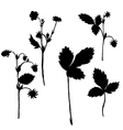 set of drawing plants silhouettes vector image