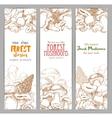 Mushroom sketch for autumn forest banner vector image vector image