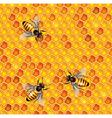 honeycells bees seamless vector image