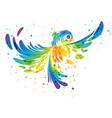 Splash colorful fantasy bird vector image