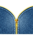 Zipper open on denim texture vector image vector image