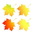 Autumn maple leaves A set vector image