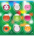 mixed fruits in bubbles vector image