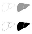 liver the black and grey color set icon vector image