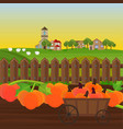 pumpkin harvest in a cart garden vector image