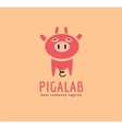 Abstract piggy cute character logo icon concept vector image