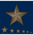 gold sequin star on a blue background vector image