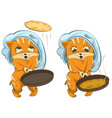 Shrovetide russian holiday cat cook fries vector image