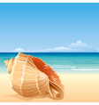 sea background with shell vector image vector image