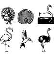 Group of Birds vector image vector image