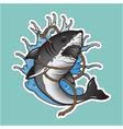 Shark in wave vector image