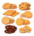 different cookies in cartoon style icons vector image
