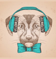 hipster animal dog hand drawing muzzle of dog vector image