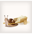 Snail with the cart with mail vector image