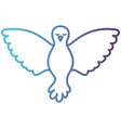 pigeon peace front view on gradient color vector image