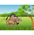 Cartoon wildebeest mascot in the jungle vector image
