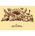 Autumn fruits and vegetables abundance Fall vector image