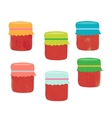 Set from colorful jars vector image