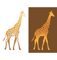 Giraffe with spots vector image vector image