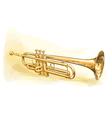 Brass Trumpet vector image