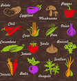 VegetablesGard vector image