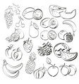 different fruits set vector image
