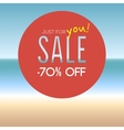 Summer sale with percentage vector image vector image