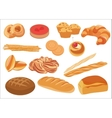 Set of healthy natural bread products and bakery vector image