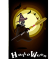 A Halloween Ghost Witch on Night Background vector image