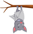 cute bat cartoon sleeping vector image