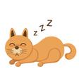 cute kitten sleeping vector image
