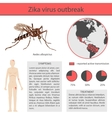 Zika virus infographics with transmission symptom vector image