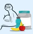 sport fitness food diet health vector image