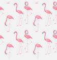 seamless pattern of a pink flamingo vector image