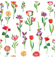 Seamless flowers pattern for garden vector image