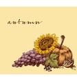 Autumn fruits background Harvest festival leaflet vector image