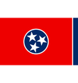 Tennesseean state flag vector image vector image