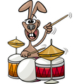 bunny playing drums cartoon vector image