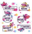 collection of doodle flowers emblems frames and vector image