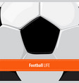 football ball background vector image