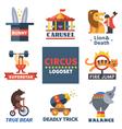 Circus emblems vector image