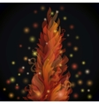 Different fire flames on a black background with vector image