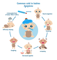 Common cold in babies symptoms vector image