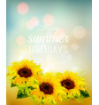 nature background with yellow sunflowers vector image