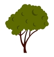 Tree with fluffy crown icon flat style vector image