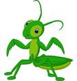 Grasshopper cartoon vector image