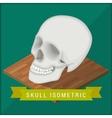 Human skull flat isometric Cranium vector image