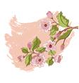 Colored Sketch of Sakura Branch3 vector image