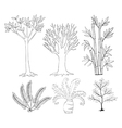 Doodle set of plants vector image
