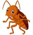 cute cockroach vector image